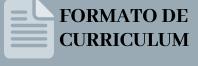 Formato de Curriculum