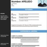 Formato de Curriculum Vitae Cronológico Para Descargar