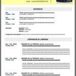Formato de Curriculum Vitae simple para completar