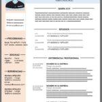 Modelo de Curriculum Vitae Funcional