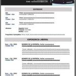 Ejemplo de Formato de Currículum Vitae para llenar