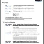 Formato de Curriculum Vitae Contemporaneo en Word gratuito
