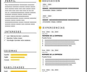 Formato de Curriculum Vitae en Español