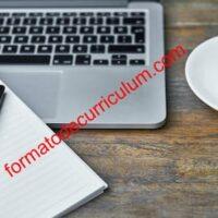 ¿Cómo Hacer Un Currículum Vitae Bueno Y Que Impresione?