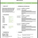 Modelo de Currículum Breve