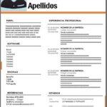 Formato de Currículum Vitae para Imprimir