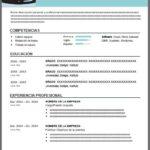 Formato de Currículum Actual