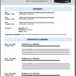 Formato de Currículum Vitae en Blanco para Llenar
