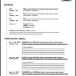 Formato de Currículum Vitae para Rellenar