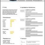 Formato de Currículum Vitae Digital